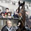 北島三郎の持ち馬の名前は与作ではなくキタサンブラック!GIも制覇! | Pinky