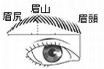 石原さとみの眉毛の作り方まとめ【整え方・脱毛・剃り方・書き方】のサムネイル画像