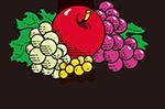 J3930HD|PRINTABLE WEAR|Fruit of the Loom Japan