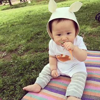 はちみつを乳児・赤ちゃんがいつから食べていい?危険な理由まとめ!のサムネイル画像