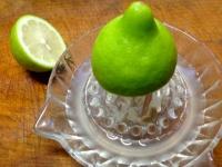 インド料理のレシピを紹介!家庭料理など簡単に作れる!スパイスが決め手!のサムネイル画像