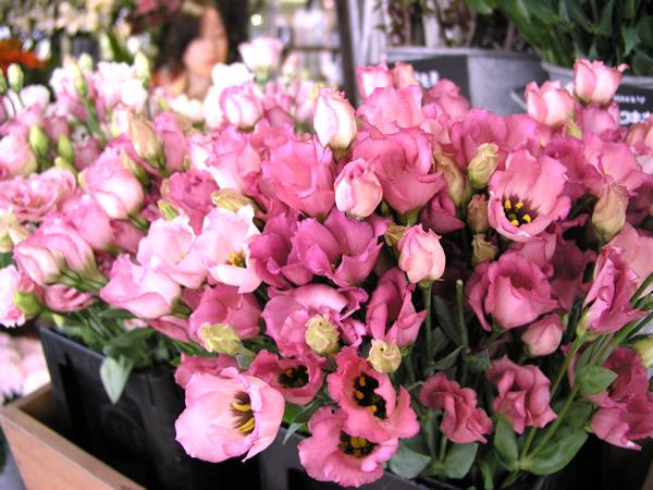 女性の誕生日プレゼントに花を贈る!人気の種類は?サプライズの方法!のサムネイル画像