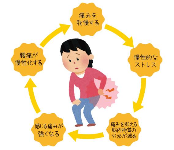左右の腰痛の原因や症状!慢性・原因不明の痛みは内臓が関係している?のサムネイル画像