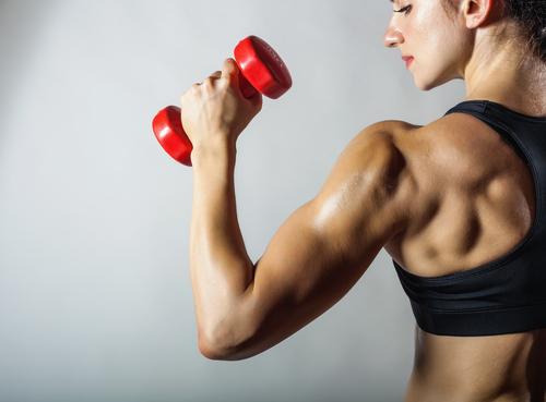 上腕三頭筋にはダンベルが最適!筋トレ・ダイエット方法まとめ!のサムネイル画像