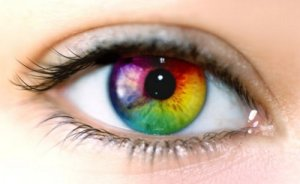 色覚テストまとめ!異常がないかゲーム感覚でチェック!あなたの目は?