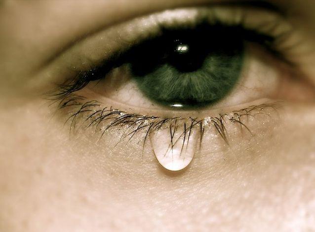 アニメ映画おすすめランキング!泣ける、感動する名作がいっぱい!のサムネイル画像