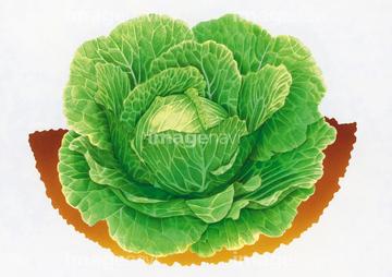 3月に旬な食べ物(野菜・魚・果物)を紹介!おいしい料理のレシピあり!のサムネイル画像