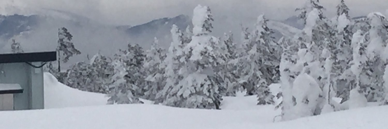 志賀高原  スキー場・旅行情報 (@SYCmXTAJvjPrSkM) | Twitter