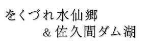 をくづれ水仙郷 & 佐久間ダム湖|南房総鋸南町 水仙と桜の名所