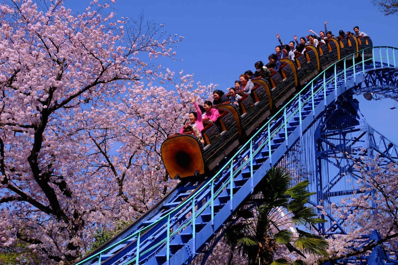 【2017年春デートプラン】春がおすすめ関東デートスポット17選のサムネイル画像