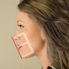 日本人の横顔の特徴を調査!美人の基準・Eラインとはいったいなに?のサムネイル画像