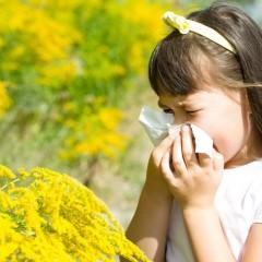 花粉症対策に有効なグッズ・方法は?症状が出る前に自分でできる予防法のサムネイル画像