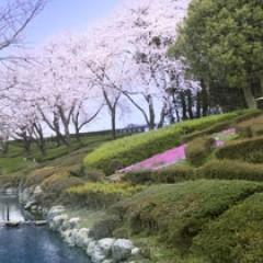川崎あやのウエストは53センチ!くびれ美人の水着グラビア画像まとめのサムネイル画像